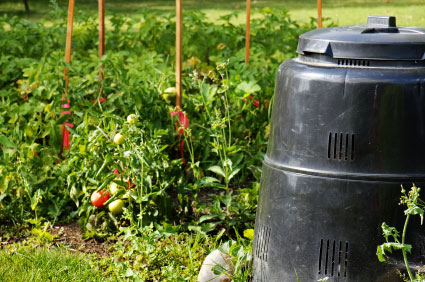 Green Behavior: Composting from Scratch
