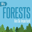 Infographic: The Importance of Forests