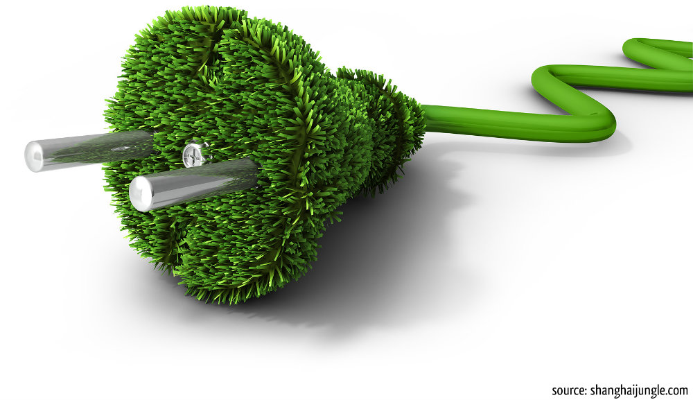 Green Behavior: Making Your Home More Energy-Efficient and Eco-Friendly