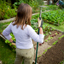 How To Build A Sustainable Vegetable Garden