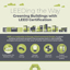 Infographic: Greening Buildings with LEED Certification
